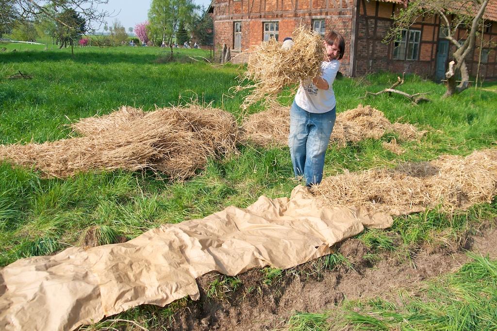 Hügelbeet mit Stroh